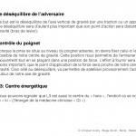 C_Users_kim_Downloads_Les chaines musculaires et aikido  Aikido santé 2017  Bletterans7